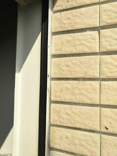 南投窗框灌注-賴小姐